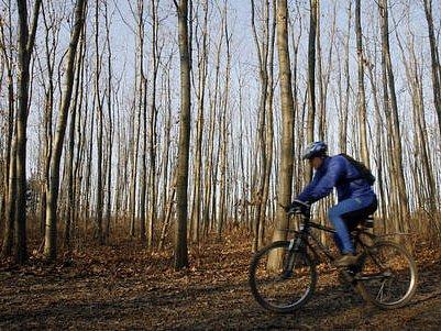PROKOPSKÝM ÚDOLÍM. Cyklisté se jím mohou nově vydat po cyklotrase z Hlubočep směrem na Stodůlky a Řeporyje. Živo na ní bylo i těsně před vánočními svátky.