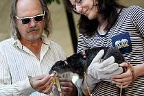 Zpěvák a skladatel Ondřej Hejma pokřtil v pražské Zoo vačnatce kuskuse pozemního. Dal mu jméno Kayla. Při té příležitosti nakrmil i staršího kuskuse Evžena.
