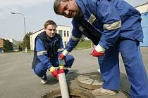 PĚT NA JEDNOHO. Přesilu obtížných hlodavců se snaží zvrátit pracovníci Pražských vodovodů a kanalizací každoroční deratizací.