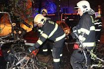 V důsledku mrznoucího deště na území hlavního města Prahy hasiči zasahovali u více jak dvou desítek případů. Nejčastěji se jednalo o nalomené nebo spadlé větve, případně vyvrácené stromy. Jako například v Čermákově ulici na Vinohradech.