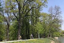 Stromojízda. Ilustrační