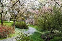 Venkovní expozice Botanické zahrady hl. m. Prahy se otevírají pro veřejnost.