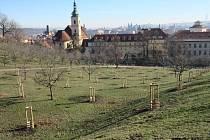 Seminářská zahrada.