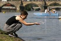 Ačkoli je voda ve Vltavě mnohem čistší než bývala, ne každý si do ní troufne skočit.