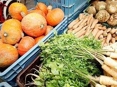 Zelenina. Ilustrační foto.