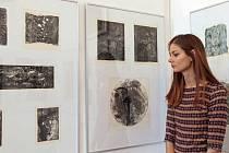 Rok 2017 je pro Sdružení českých umělců grafiků Hollar rokem přelomovým,kdy spolek oslaví stoleté výročí své existence.