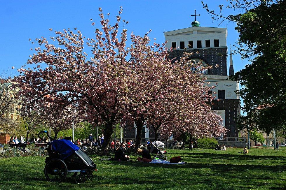 Farmářské trhy na náměstí Jiřího z Poděbrad se ve středu 22. dubna znovu otevřely.