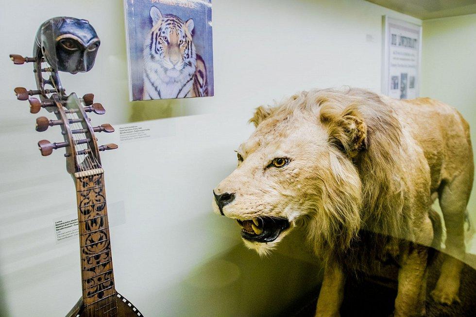 Národní muzeum nabízí své výstavy k prohlédnutí zdarma online. Snímek je z výstavy Hudební zvěřinec.