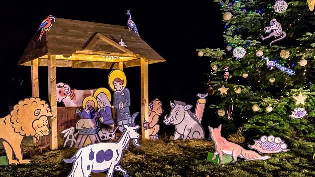 V neděli se v Zoo Praha rozsvítí vánoční strom. Lampionový průvod k němu vyjde v 17 hodin od Vzdělávacího centra.