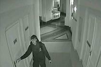 Kamerový systém v areálu Ústavu pro matku a dítě na Podolském nábřeží v Praze 4 pořídil řadu snímků pachatele v akci.