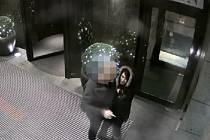 Dopadnout kapsářku předstírající v noci na 9. prosince před hotelem v centru metropole nabídku sexuálních služeb, ale ve skutečnosti se snažící prošacovat kapsy oslovených cizinců, se podařilo kriminalistům I. obvodu pražské policie.