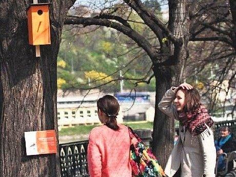 """VIVALDI, SMETANA, DVOŘÁK. Ptačí budky """"zpívaly"""" známé klasické skladby Jaro, Vltava a Humoreska. Neobvyklý projekt přilákal rodiny s dětmi, turisty i teenagery."""