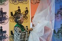 Meda Mládková představila v pátek 10. října 2014 na setkání s novináři v Museu Kampa v Praze jeden z nejdražších obrazů Andyho Warhola, který bude k vidění na výstavě Auto v proměnách času.