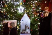 První dáma Ivana Zemanová na Pražském hradě rozsvítila vánoční stromek.