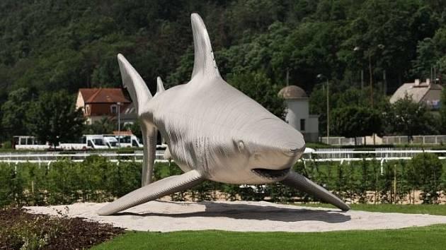 Závodiště v Chuchli zdobí socha žraloka.