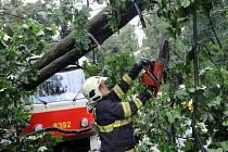 Pražští hasiči hlásí 205 bouřkových zásahů – desetkrát víc, než je denní průměr. Překvapivě obešly bez čerpání vody. Vedle odstraňování spadlých stromů a nalomených větví ale nechybělo třeba zajišťování uvolněných plechů.