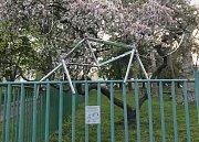 Lišku z trosek kola najdete na plotě hřiště v Zavadilově ulici