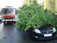 AUTO POD STROMEM. Majitelka brala naštěstí celou událost sportovně. V celé Praze se kvůli silnému větru hasiči nezastavili.