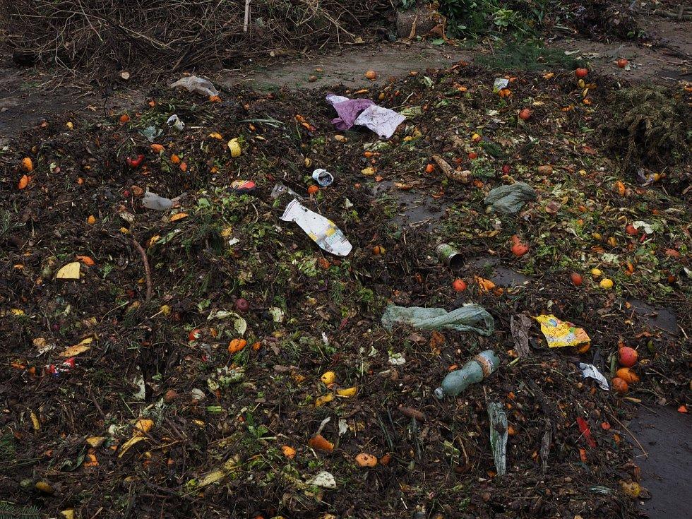 Co do bioodpadu patří a co ne?