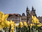 Přípravy Velikonočních trhů na pražském Staroměstském náměstí 5. dubna 2019.