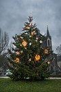Vánoční strom na Karlínském náměstí. 29.11.2017