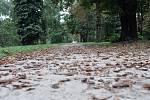 Ve Stromovce už končí léto a začíná podzim.