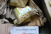 Pražští celníci objevili ve spolupráci se Státní zemědělskou a potravinářskou inspekcí v kontejnerové zásilce z Vietnamu dvě tuny zdravotně závadných bambusových výhonků.