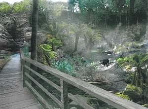 Pražská zoo staví novou expozici australské fauny