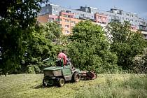 Městská část Praha 8 se dlouhodobě potýká s neposekanou trávou na jejích území. Konkrétně na sídlišti Troja, nad botanickou zahradou, se začalo 23. května sekat, ale na většině ploch zůstávala vysoká tráva.