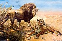 Lvi na školním obraze od malíře Františka Xavera Procházky.