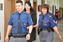 Z vraždy spáchané autem se před Krajským soudem v Praze zpovídala 41letá Radka Horáková z Mnichovic poblíž Vlašimi na Benešovsku.