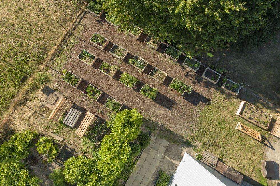 Komunitní zahrada funguje i na sídlišti na Černém Mostě. Zahradníci tam mají možnost svou úrodu ihned opéct a sníst díky grilovací zóně, která v místě funguje.