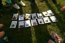 Děti se budou učit chránit přírodu ve svém okolí