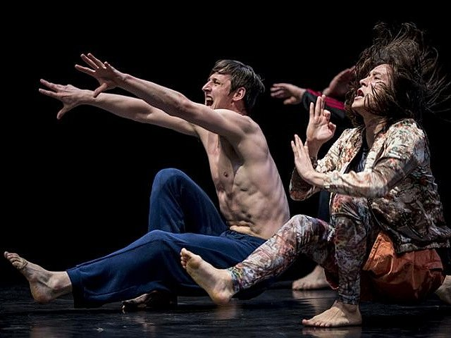 Cenu diváka a prestižní ocenění Taneční inscenace roku si odnesl Collective Loss of Memory souboru DOT504 v choreografii Jozefa Fručka a Lindy Kapetaney.