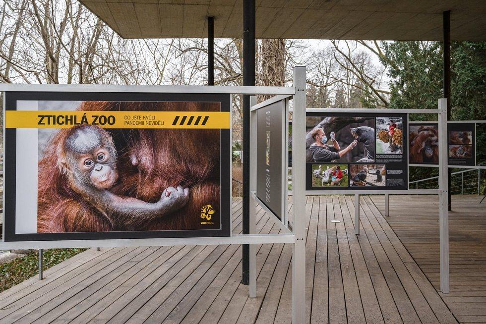 Výstava Ztichlá zoo.