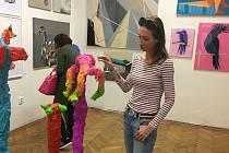 Studovala zdravotní sestru, pak ale následovala své dětské sny a šla studovat malbu na Akademii výtvarných umění. Ještě při škole se snažila umělecká díla dostat na zdi domovů, avšak neúspěšně. Dnes Jana Laštovka již sedmým rokem vede první čistě online g