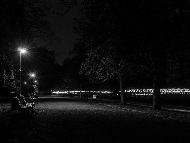 Zář Světlušek ve Stromovce.