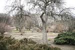 V pražské botanické zahradě.