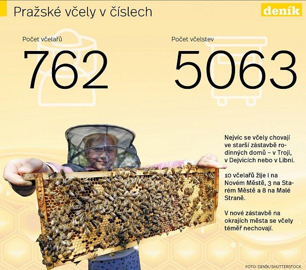 Včely vPraze. Infografika.