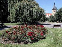 Karlovo náměstí.