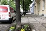 Magistrátní Institut plánování a rozvoje ukazuje dobrý příklad péče o městskou zeleň. Na snímku je rabátko v Bubenečské ulici.
