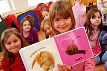 Výuka anglického jazyka v mateřské škole.