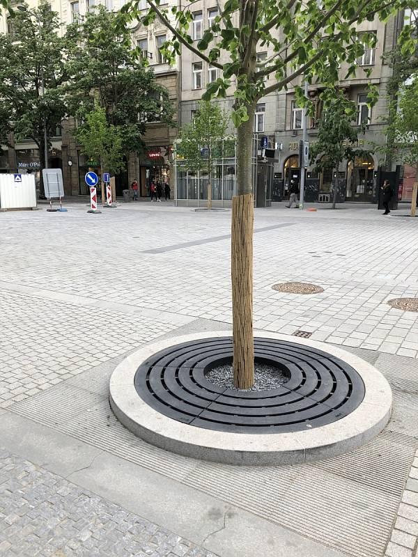 Magistrátní Institut plánování a rozvoje ukazuje dobrý příklad péče o městskou zeleň. Na snímku je Václavské náměstí.
