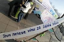 Na Palackého náměstí se v pondělí 30.ledna uskutečnil happening sdružení Arnika nazvaný Procházka poslední alejí, který upozorňuje na vládní novelu zákona umožňující silničářům volné kácení podél silnic.