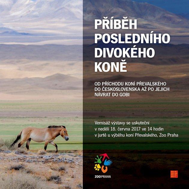 Pozvánka na vernisáž výstavy Příběh posledního divokého koně.