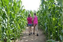 Kukuřičná pole jsou zábavou jak pro děti, tak dospělé.