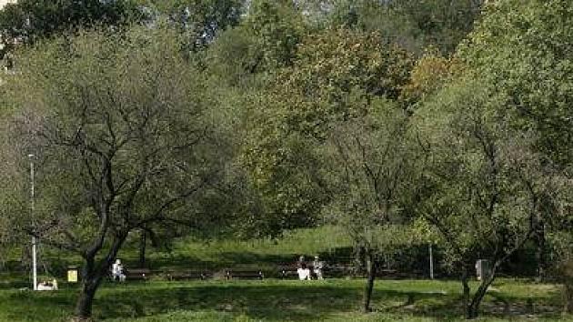 Park u Havlíčkových sadů.