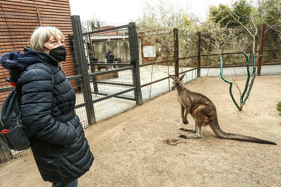 Otevření venkovních expozic v pražské zoologické zahradě v pondělí 12. dubna 2021.
