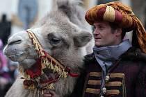 Průvod Tří králů na velbloudech za hudebního doprovodu z Hradčanského náměstí na náměstí Loretánské.