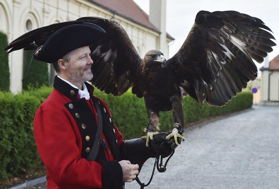 Sokolník Michael Budera se svým dravcem na Pražském hradě, kde byla 14. listopadu 2020 v domku sokolníka představena kniha Zdeňka Stenberga Sokolnictví.
